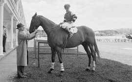 Lightning, camera, action: Phar Lap, the movie