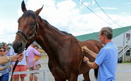 American Pharoah vs Secretariat vs Seattle Slew vs Affirmed: how they actually measure up