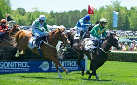 The new initiative aimed at 'rebuilding' American jump racing