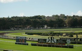 Taxman slugging NSW racing, but for how much longer?