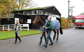 Lanwades looks set for another memorable year as Sea The Moon joins stallion roster