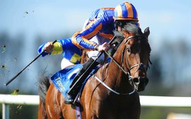 Breeders' Cup: Aidan O'Brien's intriguing challenger in the Juvenile