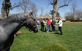 Kentucky farms join forces to give potential fans a taste of the horse country