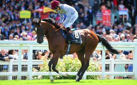 The European runners to watch at the Breeders' Cup