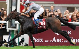 Treve centre stage once more as the big Arc contenders flex their muscles