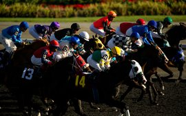 By the numbers: Woodbine wagering analysis shows there's value in data