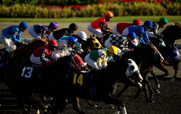By the numbers: Woodbine wagering analysis shows there's value in