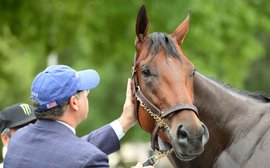 American Pharoah: Ahmed Zayat speaks from the heart about his horse of a lifetime
