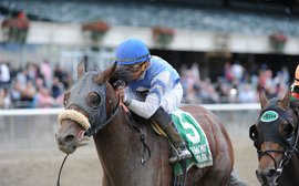 How Jimmy Jerkens uncovered the key to Effinex