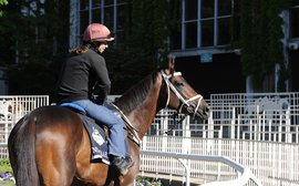 Team de Kock enjoying Belmont adventure with Mubtaahij
