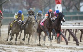 Shades of Uncle Mo as 'wow' horse Outwork closes in on a Derby dream