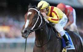Could Rachel Alexandra's daughter prove to be a chip off the old block?