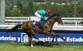 Spain's star colt bidding to make history in the 2000 Guineas