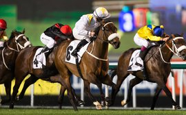 Irish trainers find richer - and easier - pickings in Dubai