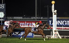 Dubai World Cup: Why reverting to dirt would be a big mistake