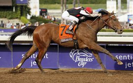 Jim Dandy next as Texas Red's return gathers pace - then watch out American Pharoah