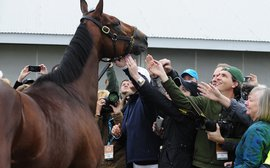 American Pharoah and social media: racing's perfect storm
