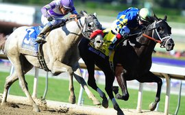 Is the BC Juvenile the kiss of death for a horse's Triple Crown chances?