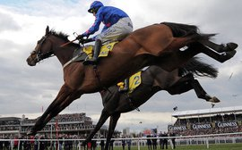 The extraordinary pull of jump racing in Britain and Ireland