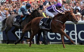 Why Aidan O'Brien may be prepared to miss his hallowed Irish Derby with Australia