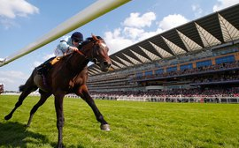 Royal Ascot: Stoute's patient approach bucks the trend in the pop-art age of training