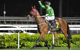 Singapore International Racing Festival puts spotlight on Kranji Sunday