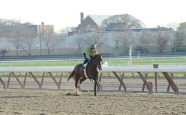 Marathoner preps KY Derby contender for a different type of race