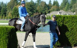 Why Shared Belief's injury could have been a blessing in disguise