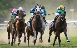 The three racetrack warriors and the rivalry New York has taken to its heart