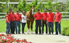 California Chrome: the life of luxury he enjoyed in Chile