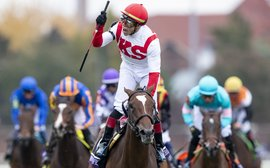 Five key matters arising from the Breeders' Cup
