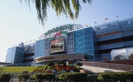 Woodbine to host special Thoroughbred Aftercare Alliance day next month