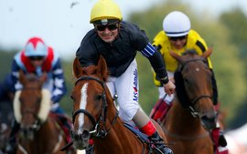 Which jockeys, trainers and sires stand out at Glorious Goodwood?