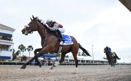 Road to the Kentucky Derby: why Florida makes perfect sense for Tiz The Law