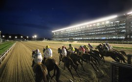 American sires sweep the board on South Korean racing's opening night in North America