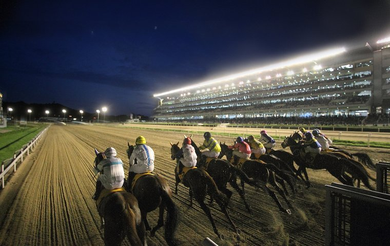 American Sires Sweep The Board On South Korean Racing S