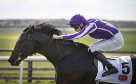 Ten Sovereigns to join U.S. Navy Flag in New Zealand