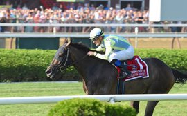 Travers card smashes all-sources handle record