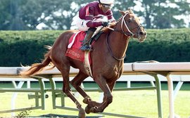 What was it about Kentucky Derby hope Gun Runner that made two racing giants so keen to have him?