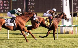 Phlash Phelps to miss bid for Maryland Million hat-trick
