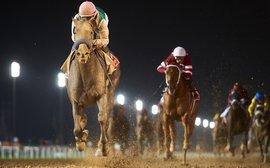 Four absolute certainties about Arrogate … or are they?