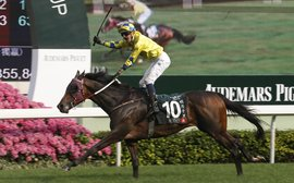 Time is called on race career of international star Werther