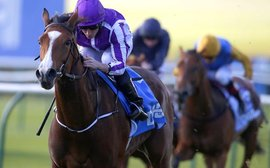 Minding heads an all-star entry for Curragh's Pretty Polly Stakes