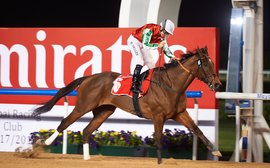 Rematch of top milers as the Meydan action steps up a gear