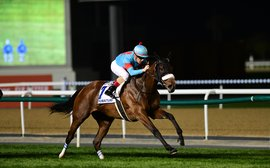 Public to be excluded from Dubai World Cup meeting