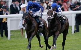 U.S. set for a strong Royal Ascot challenge as Casse, Mott, Pletcher and Ward all make entries