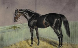 St Simon: He enriched the breed to an extent unmatched by any other horse