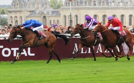 Breeders' Cup countdown: who won what on the international stage