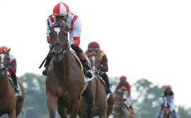 Newspaperofrecord's revival such a boost for her breeders - now watch for more where she came from