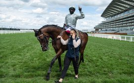 Royal Ascot: Massive increase in international Tote pool